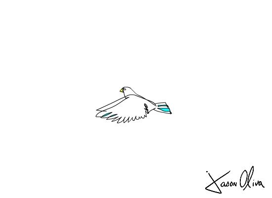 Bird in Motion jason oliva